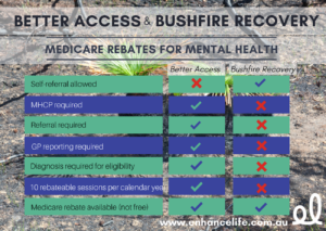 Better Access & Bushfire Recovery Infographic